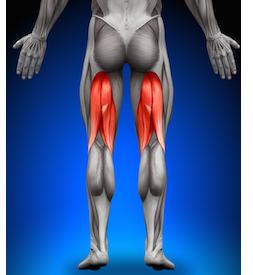 musculos-que-intervienen-en-el-running-isquiotibiales